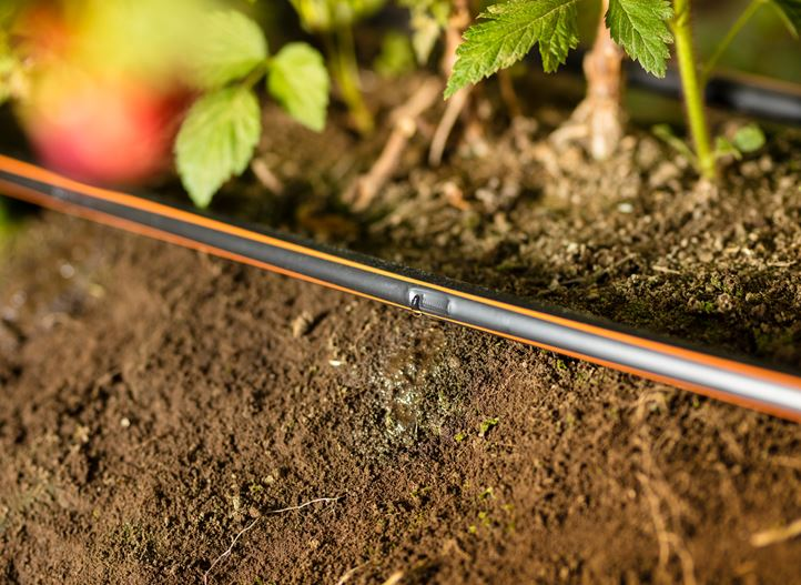 streamline drip irrigation